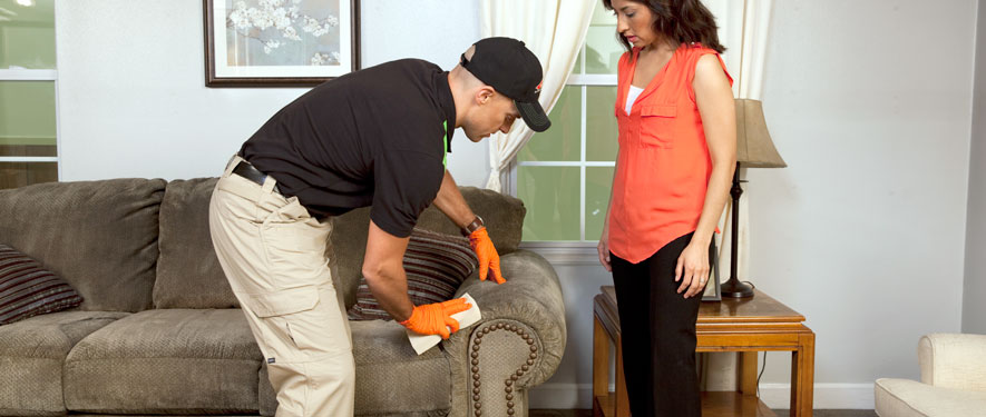 Brooklyn, NY carpet upholstery cleaning